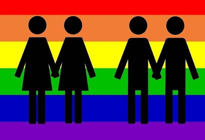 Why majority of society looks down on homosexuals?