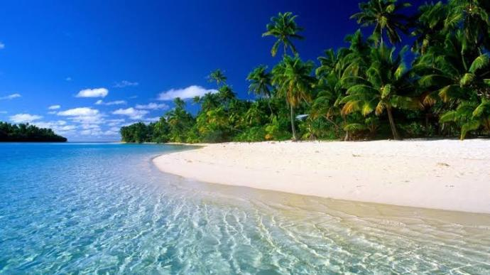 Hey folks, if you were stranded on a deserted island and you could have only one item, what would it be?