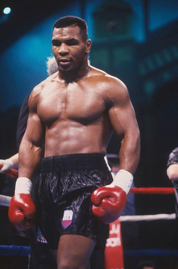 Whats your opinion on a Mike Tyson once offering a zookeeper a sum of money to fight a Silberback Gorilla?