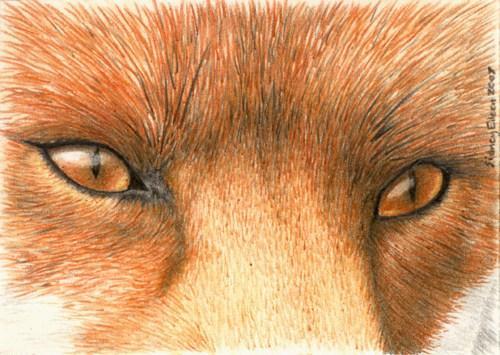 Is the 'Fox Eye Trend' racist towards Asian people?