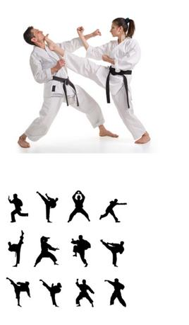 Which of these 4 martial arts is it hardest to achieve a black belt in, which is highest belt, assuming the person began with no experience at all?