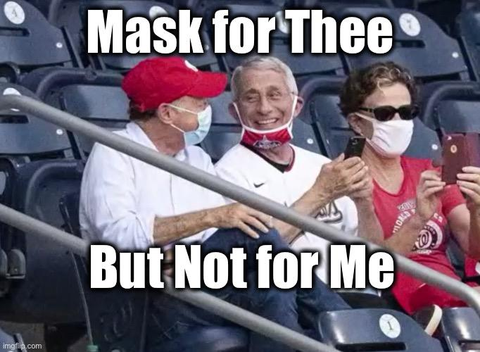 Be honest, do you think wearing a mask is stupid?