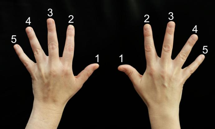 How Many Fingers Do You Use AND Why?