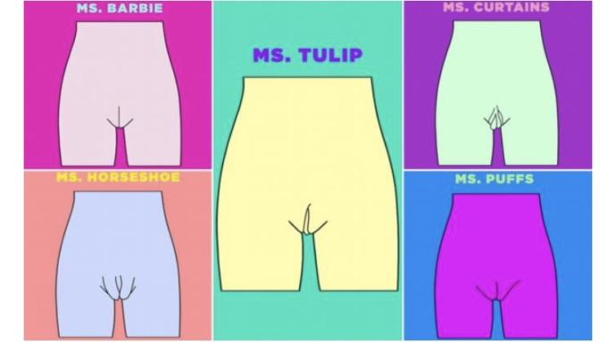 Men- do you like Ms. Curtains?