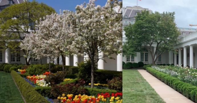 Why would they destroy a Rose Garden which was there since the 1900s be torn down and removed by the current administration?