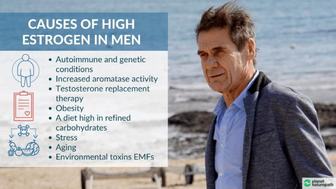 Do you know what the effect of estrogen is on men?