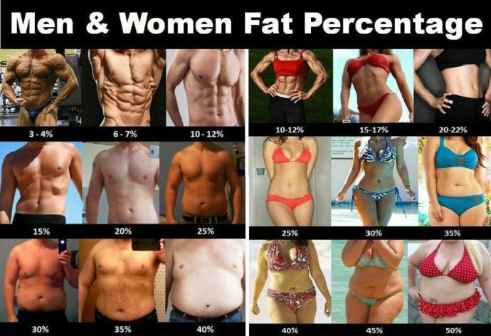 According to this chart, which body fat percentage most closely resembles your own body type?
