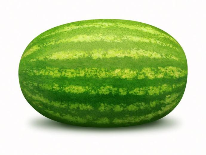 """Do you think it sounds dumb to refer to a woman breasts as """"melons""""?"""