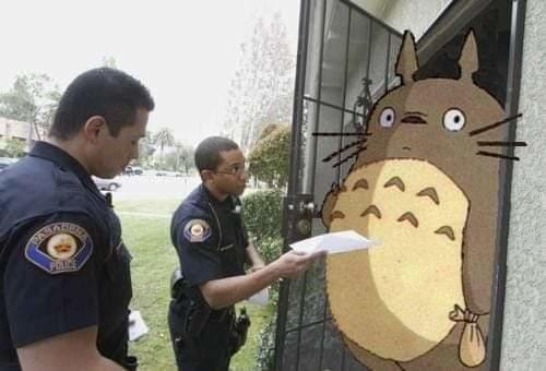 Why are the police visiting Totoro?