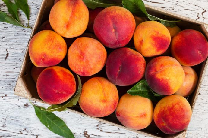 Are peaches or plums better?