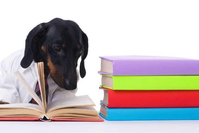 Self-Study/Teaching Tips?