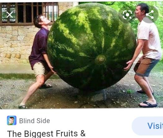 Worlds largest produce which would you be surprised to see photos included?