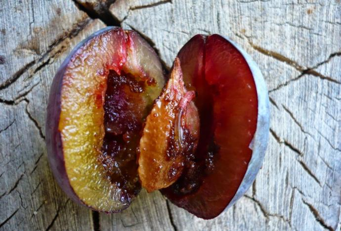 Im vegetarian since 4 years. I ate a plum with worm inside, what should I do?