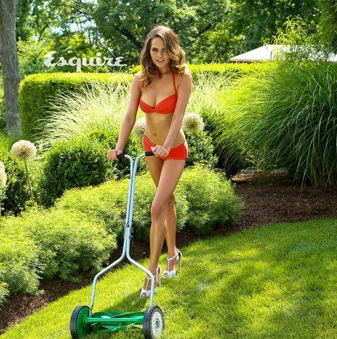 Do you mow grass?