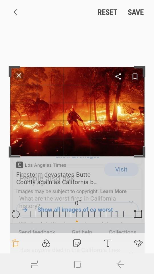 Why do people believe ca deserves its forest fires when 60 percent is government forests?