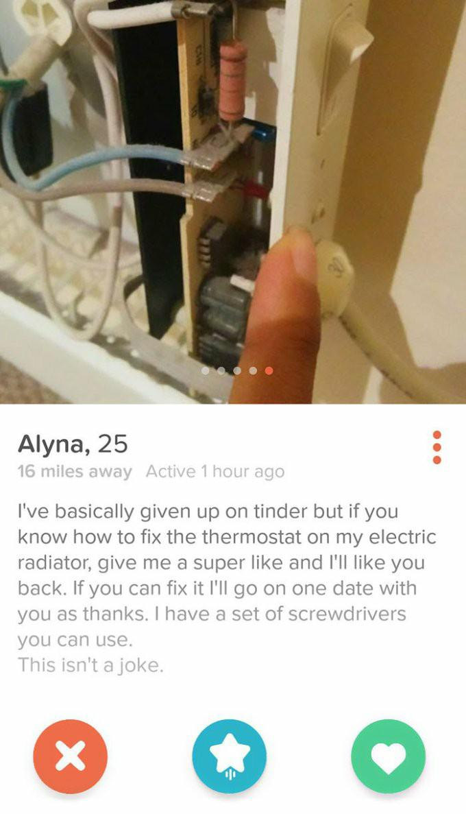 Which one of these dating profiles gives you the most laughs?