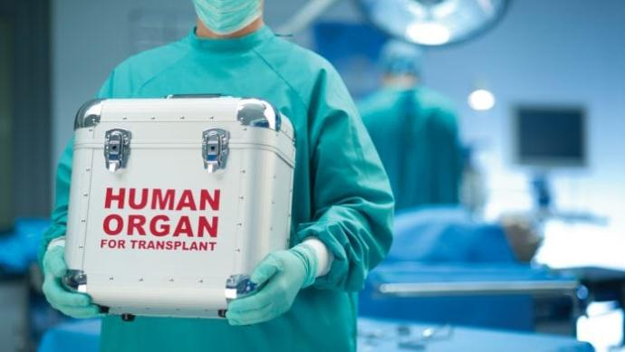 Do insurance companies cover the price of a donor organ?