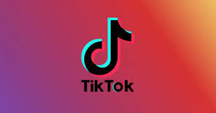 Do you find that most TikTok videos are just plain dumb and stupid and they are not even funny?