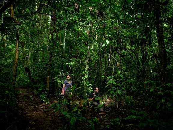 Youre guaranteed a 5 million dollar check if you are willing to walk through the Amazon at night with an another person til day break, would you go?