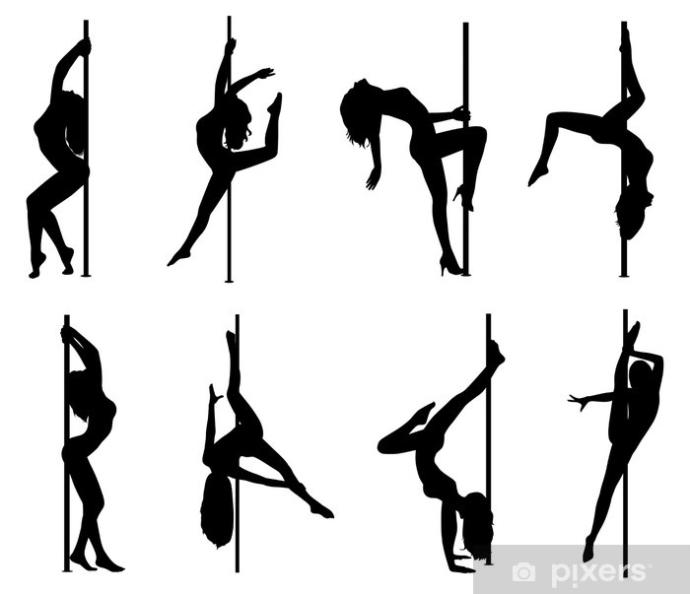 Would you find it hot if your partner did pole fitness?