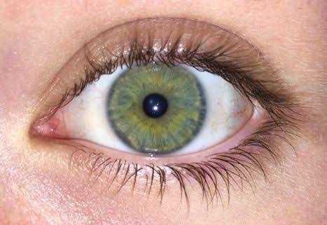 Which eye color do you prefer?
