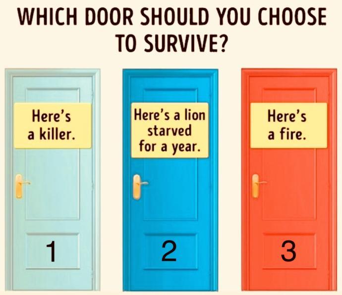 Choose A DOOR Any DOOR?