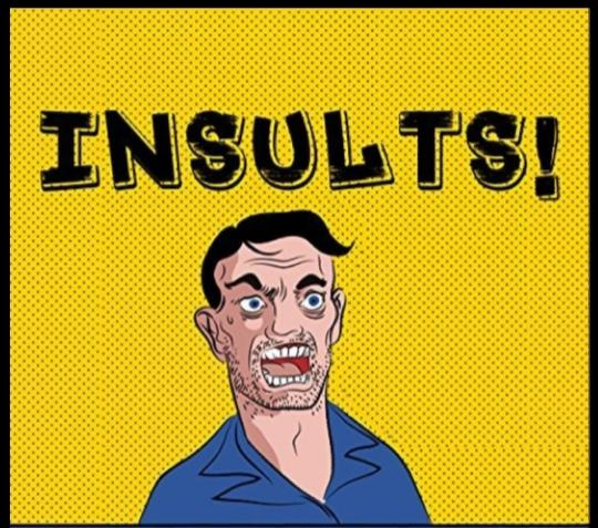 What Do You Really Think Youre Accomplishing By Insulting Others?