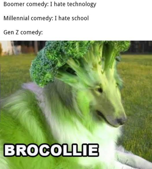 What do you think of GEN Z humor?
