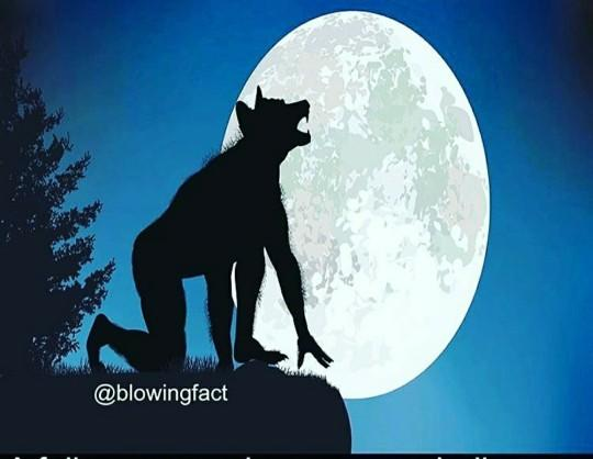 Its a blue moon tonight. Anyone doing any manifesting, spells, rituals , or prayers?