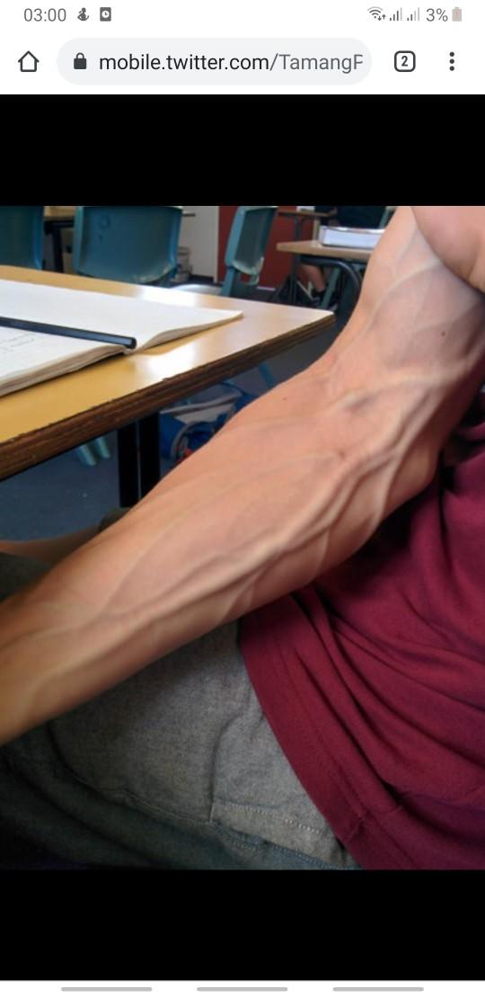 Ladies, why do you like so much veiny arms?
