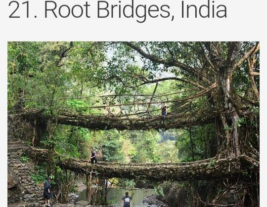 Choose the bridge you think is the most dangerous photos included?