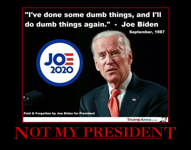 Why did you vote for Biden?