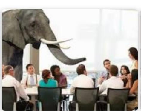 Do You Ignore The Elephant In The Room Or Do You Tackle It Head On?