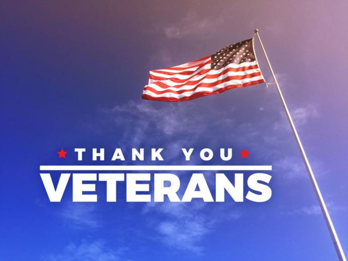 How important is Veterans Day to you?