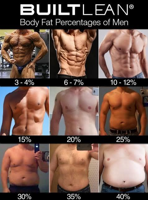 What is your body fat ratio?