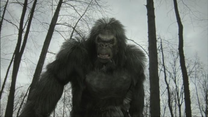 Do you think Bigfoot is real or a hoax?