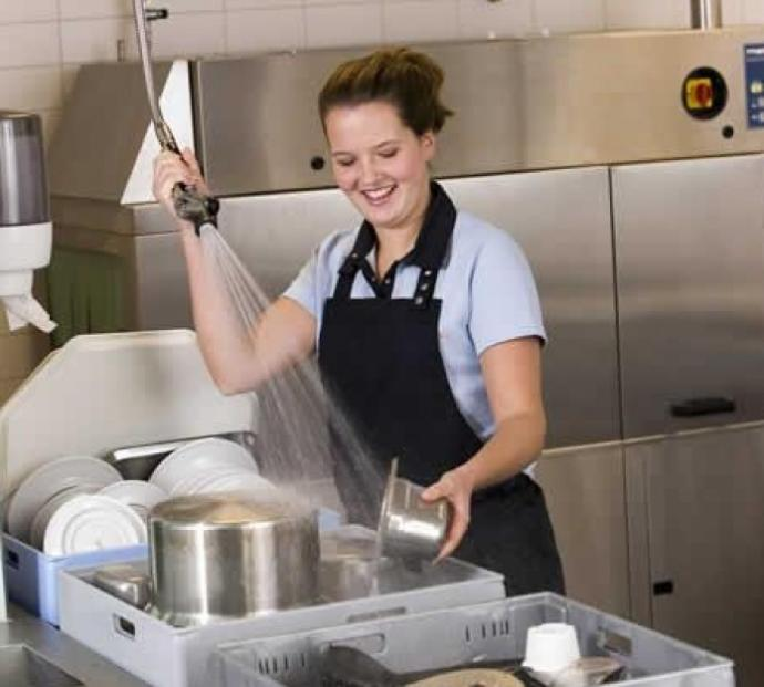 Have you ever had a job as a professional dishwasher?