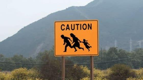 If you had the power to, what would you do with the illegals currently present in the US? And how would solve the issue of illegal immigration?