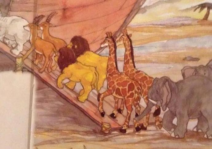 Did Noah accidentally bring two male lions onto the Ark?