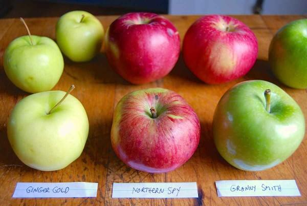 Making rum-apple pie: What is the best rum and best apples for this undertaking?