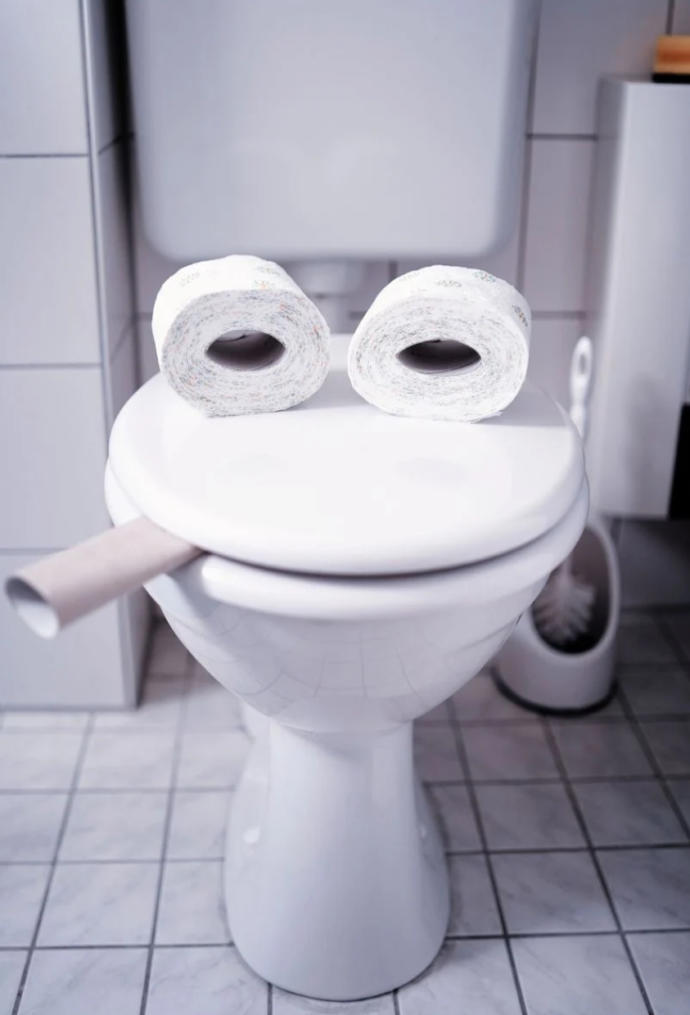 If Your Toilet Could Talk What Would It Say?