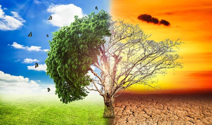 Is Global Warming due more to humans or natural causes?