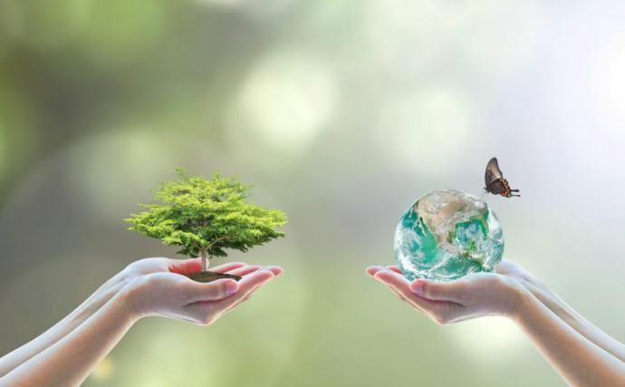 What do you think of ecology?