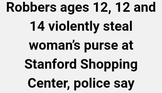 Teens steal ederly ladies purse at mall in ca?