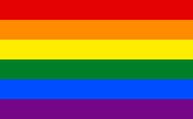 LGBTQIAP+ PRIDE FLAG
