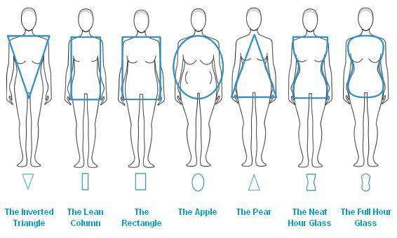 Favorite body shape on a woman?