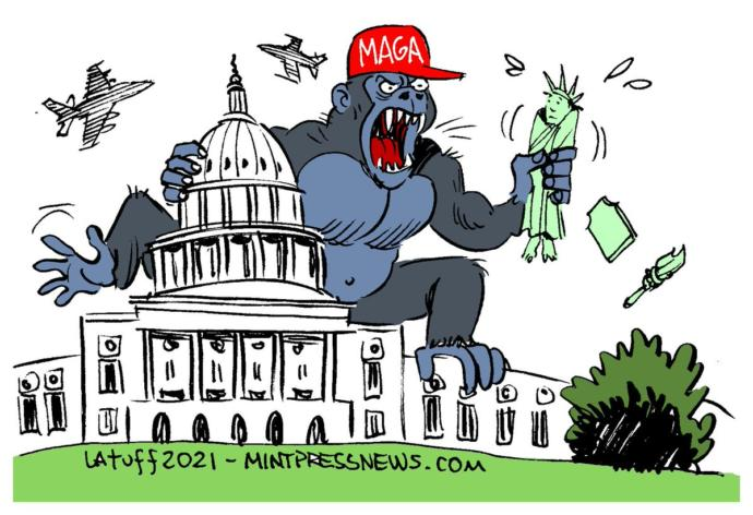 What did you think when you saw the MAGA mob storming the capital?