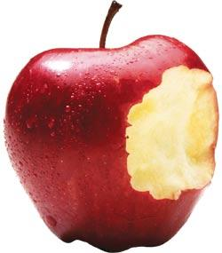 If eve ate the apple, why do men have an adams apple?