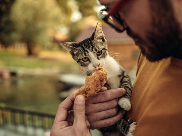 Do you share your food with your PET (S)?
