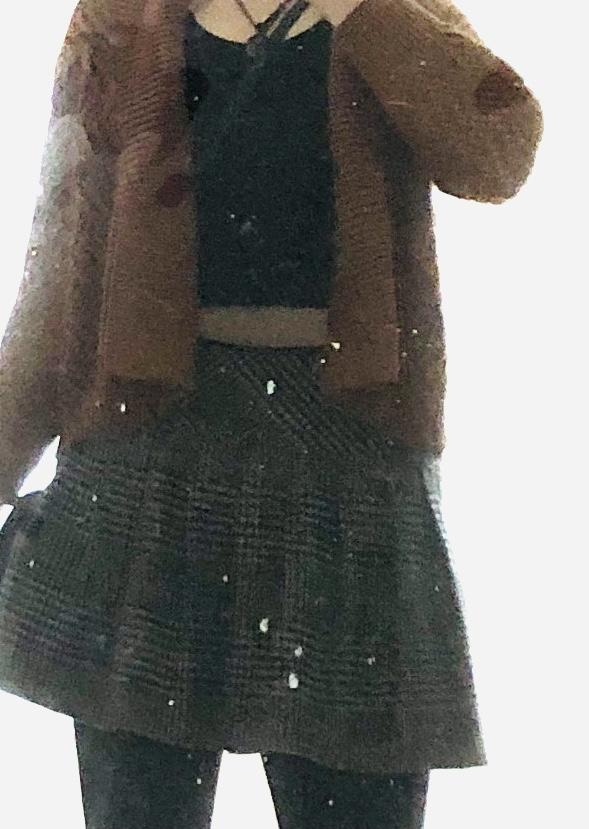 Hard to pick up color but from what you can see (burnt brown cardigan with plaid black / grey skirt black tights) clash badly or ok?